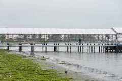 CARACAS, PERU - APRIL 18, 2013: Industry wharf in Caracas. Coast is full of green weed Royalty Free Stock Photo