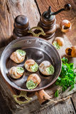Caracóis deliciosos com manteiga de alho e hebrs Foto de Stock Royalty Free