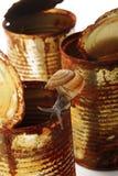 Caracol Imagenes de archivo