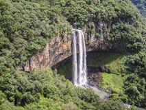 Caracol baja Canela el Brasil Fotos de archivo libres de regalías