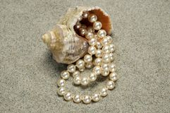 Caracol con las perlas en la playa foto de archivo libre de regalías