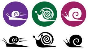Caracol. Conjunto del icono del vector. Fotografía de archivo libre de regalías