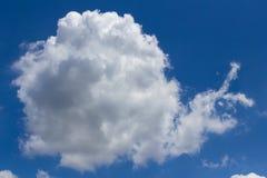 Caracol da nuvem imagens de stock