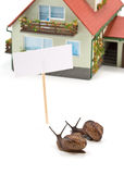 Caracol de jardín y casa miniatura Imagenes de archivo