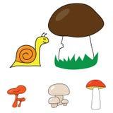 Caracol e cogumelo Imagem de Stock