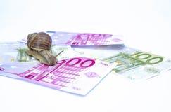 Caracol em dinheiros Foto de Stock Royalty Free