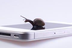 Caracol en el dispositivo Fotos de archivo libres de regalías