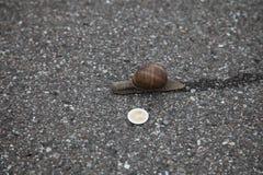 Caracol en la tierra con 1 moneda euro fotos de archivo