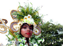 caracol hulaka zdjęcia stock