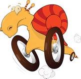 Caracol nas rodas. O excitador de raça. Desenhos animados ilustração royalty free