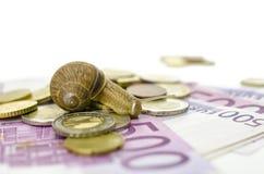 Caracol que senta-se no dinheiro do Euro Fotos de Stock Royalty Free