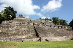 Caracol's tallest pyramid Royalty Free Stock Photos