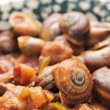 Caracoles cocinados españoles en salsa Imágenes de archivo libres de regalías