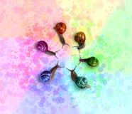 Caracoles coloreados Fotografía de archivo
