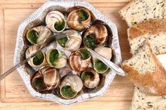 Caracoles como alimento gastrónomo francés Fotografía de archivo
