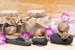 caracoles en rocas, contra la perspectiva de la sal para un balneario en tarros Foto de archivo libre de regalías