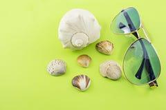 Caracoles y gafas de sol marinos Fotos de archivo