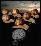 Caracoles y reloj de bolsillo Imagen de archivo libre de regalías