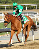 Caracortado Wins The Sunshine Millions Turf Stock Photography