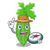 Caractère amer de melon d'explorateur sur des légumes frais illustration de vecteur