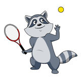 Caractère de joueur de tennis de raton laveur de bande dessinée Photos libres de droits
