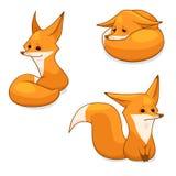 Caractère de renard rouge Image libre de droits