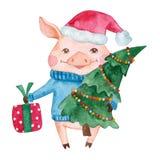 Caractère mignon de porc d'aquarelle dans un chapeau du ` s de Santa illustration libre de droits