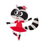Caractère mignon de raton laveur, danseur classique dans des chaussures aiguës, jupe de tutu illustration stock