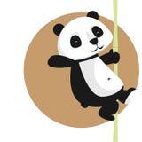 Caractère mignon de vecteur : panda sur le bambou Photographie stock