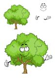 Caractère vert d'arbre de bande dessinée avec le pouce  Image stock