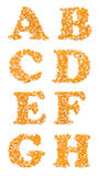 Caractères capitaux faits de graines de maïs Photo libre de droits