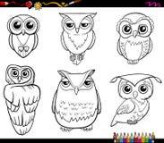 Caractères de hibou colorant la page Image stock