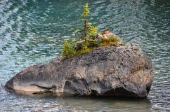 Caractéristique de lac Maligne, Canada Images stock