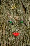 Caractéristiques faciales sur l'arbre image libre de droits