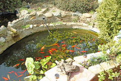 Característica da água Fotografia de Stock Royalty Free