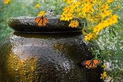 Característica da água do jardim Fotos de Stock