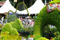 Característica da água em Hong Kong Flower Show fotos de stock royalty free