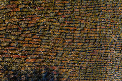 Característica da água - pedras verticais Imagem de Stock Royalty Free