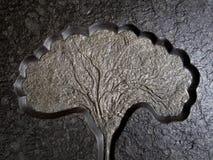 Característica fósil del lirio de mar de Crinoid en placa de la roca de fondo Imagen de archivo libre de regalías