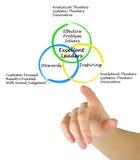 Características de líderes excelentes Imagen de archivo libre de regalías