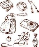 Características fêmeas ilustração do vetor