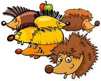 Caracteres animales de la historieta divertida de los erizos ilustración del vector
