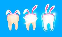 Caracteres lindos del diente de la historieta con la decoración de los oídos de conejo