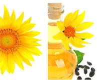 Carafe com petróleo vegetal e girassóis Fotografia de Stock
