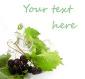 Carafe del vino e giovane uva fotografia stock