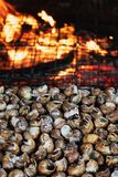 Caragols a la llauna, catalan recipe of snails royalty free stock photography