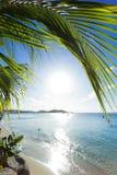 Caraibico - st Martin Fotografia Stock Libera da Diritti