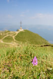 caraiman крест Стоковое Фото