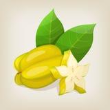Carambola della frutta di stella Fotografie Stock Libere da Diritti