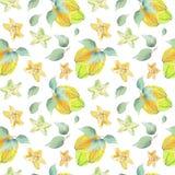 Carambola tree pattern stock illustration